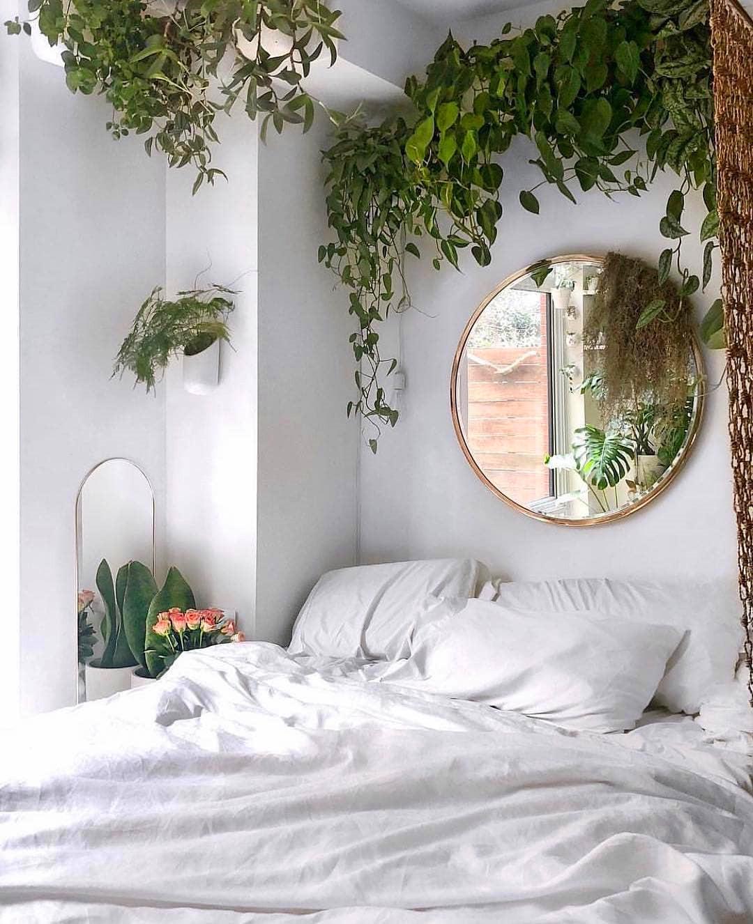 60+ Beautiful Indoor Plants Design in Your Interior Home