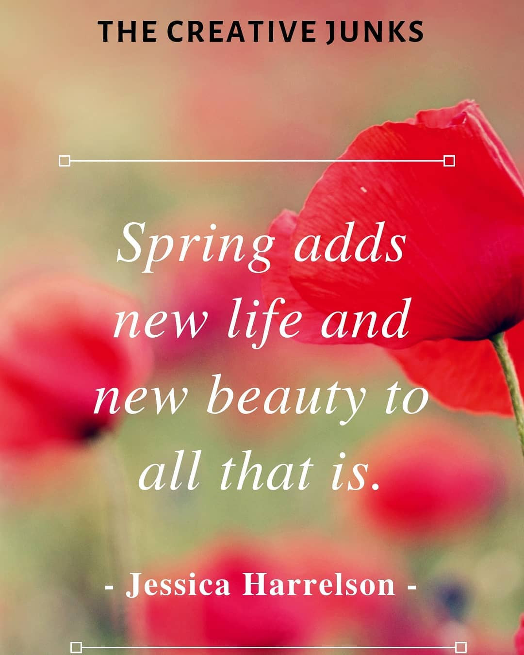 Best Spring Quotes to Welcome the Season of Renewal,hello spring quotes,funny spring quotes,happy spring quotes,spring flower quotes