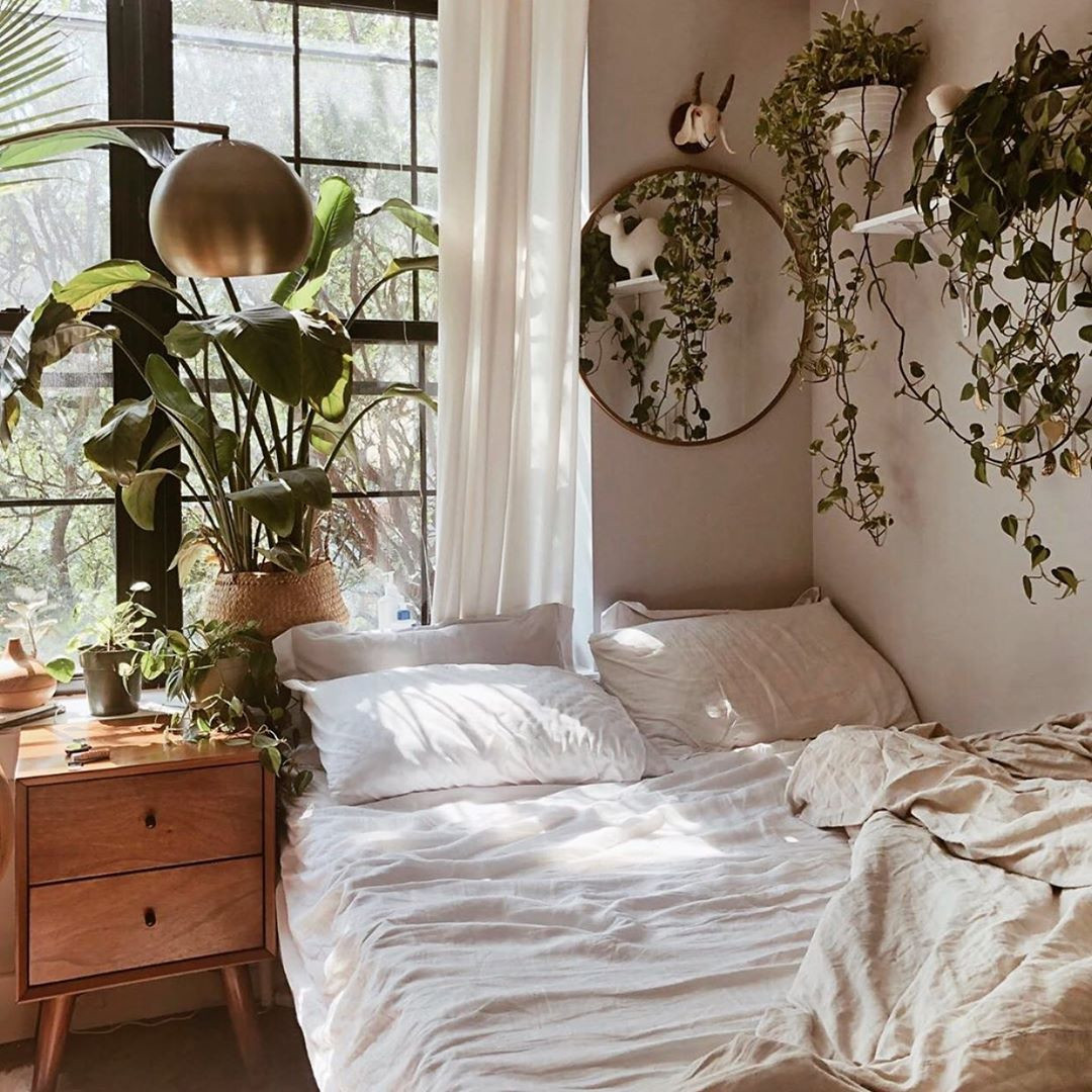 60 Hanging Plants That'll Instantly Bring Life to Any Room