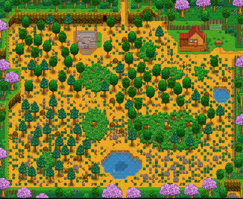 Stardew Valley farm layout Standard